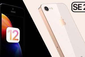 iPhone SE 2 và sự trở lại của một smartphone tầm trung, giá chỉ 9 triệu đồng