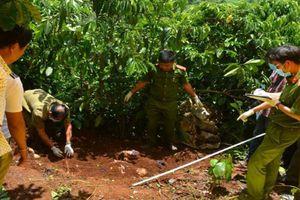Lâm đồng: Triệu tập chồng và con trai của nghi phạm sát hại 3 người, chôn xác phi tang