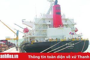 Đã có 3 chuyến tàu container quốc tế cập Cảng Tổng hợp quốc tế Nghi Sơn