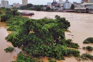Mưa lớn bất ngờ gây ngập lụt TP Móng Cái