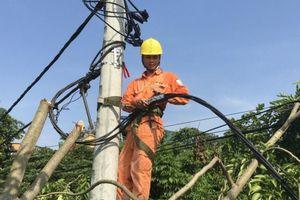PC Hà Nam huy động mọi nguồn lực đảm bảo cung cấp điện trong mùa nắng