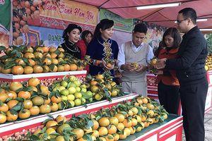 Tuyên Quang tập trung phát triển nông nghiệp hàng hóa
