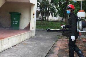 TP. HCM: Báo động kiến ba khoang tấn công