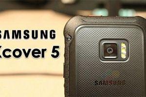 Samsung sắp tung ra mẫu smartphone siêu bền Galaxy Xcover 5 chạy chip Exynos 7885