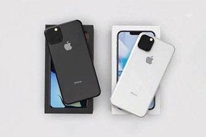 Touch ID có thể trở lại trên iPhone 2020