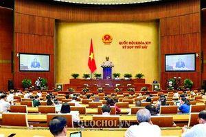 Quốc hội thảo luận kinh tế - xã hội, Bộ luật Lao động sửa đổi