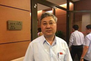 ĐBQH Trần Văn Lâm: Tư nhân 'không kém' FDI hay DNNN nếu được trao cơ hội