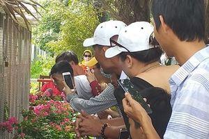 Cặp rắn hổ mây 'khủng' hút khách du lịch đến với vùng bảy núi-An Giang.