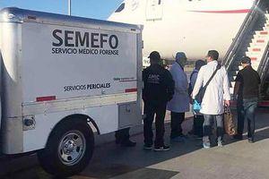 Tử vong trên máy bay vì nuốt 246 gói cocaine