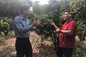 Tôn vinh vị thế cho nông sản Việt