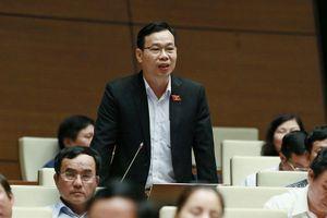 ĐBQH: Lo ngại tái diễn nhiều 'đại dự án' thua lỗ nghìn tỷ như đạm Ninh Bình