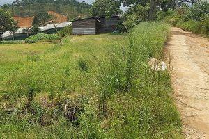 Dự án treo 10 năm, thung lũng hoa hồng tan tác ở Đà Lạt