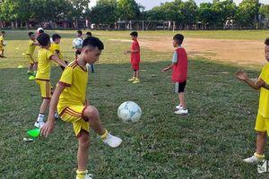 Nhi đồng Anh Sơn nỗ lực hết mình ở Giải bóng đá TN-NĐ Cúp Báo Nghệ An 2019