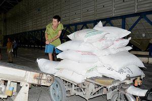 'Ông trùm' làng xuất khẩu gạo lỗ nặng gần 1.500 tỉ đồng