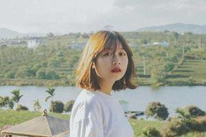 Lâm Đồng xuất hiện 'ốc đảo chè' xanh rì tuyệt đẹp đốn tim giới trẻ