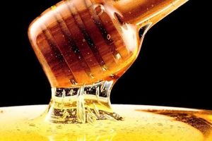 Tác dụng bất ngờ của mật ong lên bệnh tình dục phổ biến