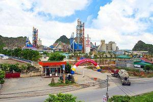 Quảng Ninh công khai trên 200 doanh nghiệp chây ỳ nộp thuế