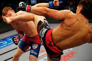 Cú đá kinh hoàng khiến võ sĩ MMA đổ gục