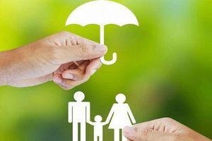 Doanh thu phí bảo hiểm nhân thọ tại Việt Nam mới chỉ đạt 1,5% GDP