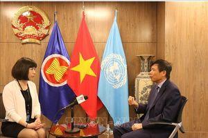 Cơ hội Việt Nam trúng cử vị trí Ủy viên không thường trực Hội đồng bảo an Liên hợp quốc là rất lớn