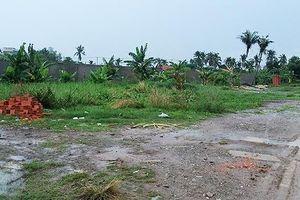 TP.HCM: Khởi tố vụ phân lô bán nền trái phép ở quận 12