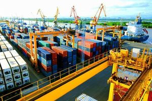 Báo cáo Thường niên Kinh tế Việt Nam 2019