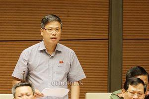 Đại biểu Quốc hội: Cần công bố kết quả thanh tra việc tăng giá điện để thấy bức tranh toàn diện