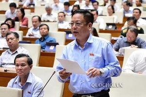 Đại biểu nói về những sai phạm cổ phần hóa cảng Quy Nhơn