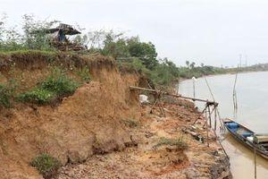 Sạt lở nghiêm trọng bờ sông Thạch Hãn đe dọa hàng ngàn hộ dân