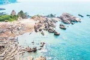 Du lịch biển đảo hút khách du lịch