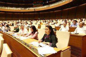 Cử tri đánh giá các đại biểu Quốc hội đã 'đi thẳng, xoáy sâu' vào vấn đề 'nóng'