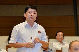 ĐBQH nói về vụ nữ sinh giao gà ở Điện Biên khi phân tích tình hình tội phạm ma túy