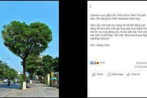 Bức ảnh chụp cây hoa sữa hình trái tim trên một con phố ở Hà Nội khiến dân tình tự hỏi: Có phải PTS?