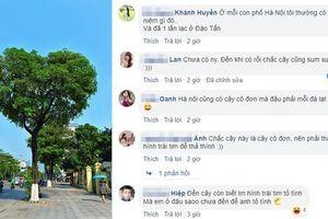 Bức ảnh cây hoa sữa hình trái tim trên phố Hà Nội khiến dân mạng thích thú, nhấn like 'rần rần'