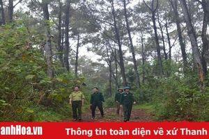 Huyện Thạch Thành: Triển khai đồng bộ các giải pháp bảo vệ rừng trong mùa nắng nóng
