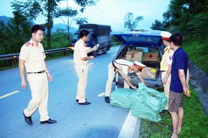 Gần 4 tạ pháo bị bắt tại Hà Giang