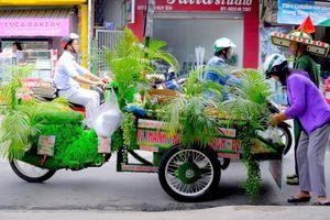 Chiếc xe xanh mướt bảo vệ môi trường của chú bán hoa quả ở Sài Gòn