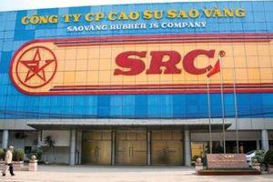 Có hay không nhóm lợi ích trong thương vụ đấu giá cổ phần Cao Su Sao Vàng?