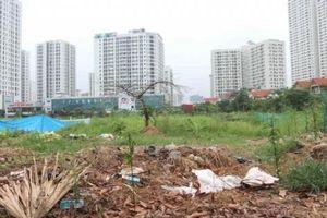 Những dự án bị bỏ hoang nhếch nhác, lãng phí ở quận Hoàng Mai