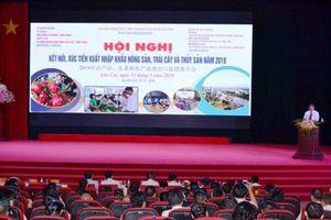 Hội nghị xúc tiến xuất khẩu nông sản sang tỉnh Vân Nam (Trung Quốc)