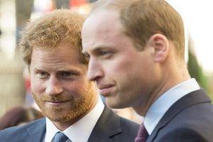 Hoàng tử Harry và anh trai 'không nhìn mặt nhau' suốt 6 tháng?
