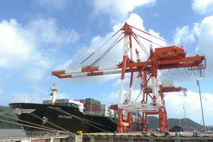 Vinalines thông báo đã sở hữu 75,01% vốn điều lệ Công ty CP Cảng Quy Nhơn