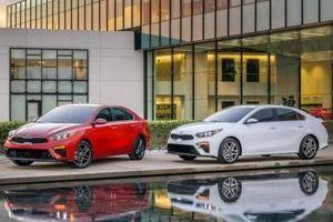 Chiếc ô tô Kia giá từ 500 triệu này vừa bán được 50 nghìn chiếc tại Việt Nam