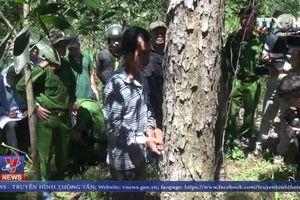 Thực nghiệm hiện trường vụ phá rừng ở Lâm Đồng