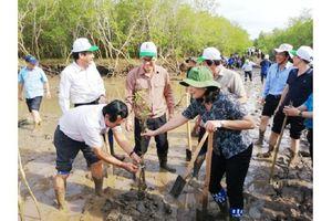 Bộ Tài nguyên và Môi trường phát động trồng rừng, tạo lá chắn bảo vệ đê biển Bạc Liêu