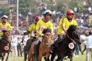 Festival Cao nguyên trắng Bắc Hà 2019 đang diễn ra ở Lào Cai