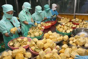 Kim ngạch xuất khẩu rau, quả đạt trên 1,6 tỷ USD