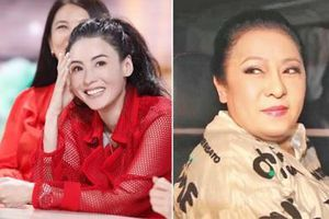 Vợ Hướng Hoa Cường mỉa mai Trương Bá Chi là kẻ nghiện nói dối