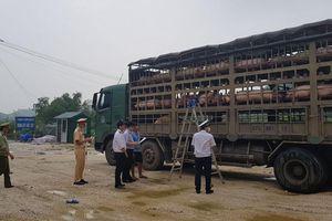 Tiêu hủy một xe tải lợn vì nghi nhiễm dịch tả châu Phi