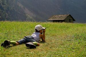 Mùa hè, cho trẻ về với thiên nhiên